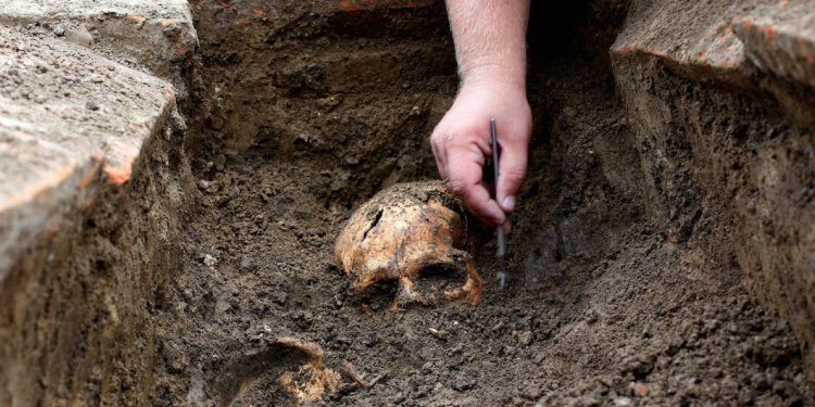 New archaeology study shows